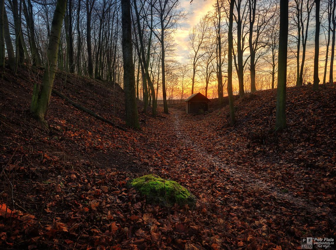 U mechového kamene | Petr Fiala