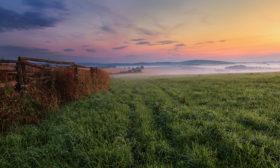 Na pastvinách