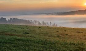 Jívovské lesy
