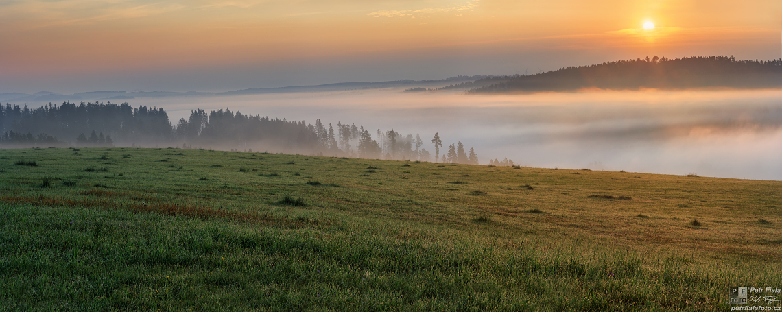 Jívovské lesy | Petr Fiala