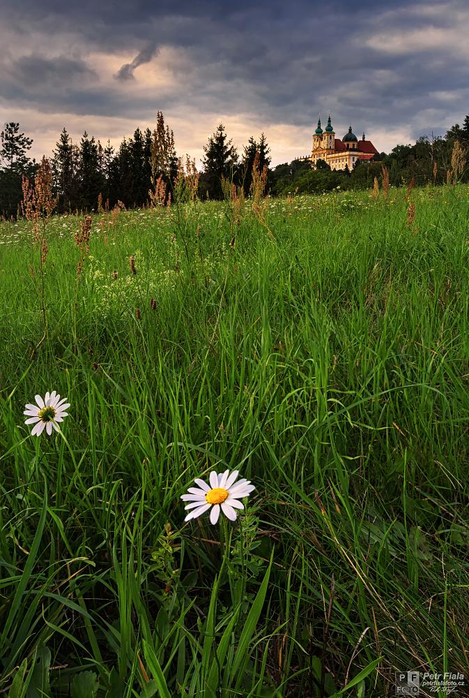 Svatý kopeček | Petr Fiala