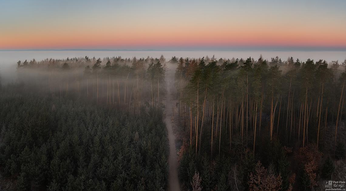 Cesta z Kosíře | Petr Fiala