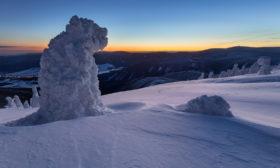 Sněžný pes – strážce hor