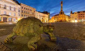 U želvy (Horní náměstí Olomouc)